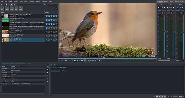 programas y editores de videos sin marca de agua