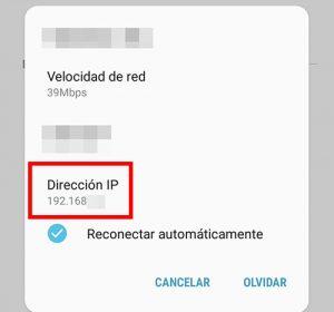 numero de ip publica
